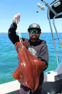 Aaron Habgood with a sample of the XOS squid he's been catching from the Lonsdale Bight.