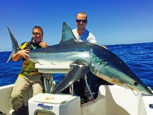Brian Nolan and Andrew Moffat with their 80 kg mako shark taken near Lady Julia Percy Island (Picture: Kevin McLoughlin).