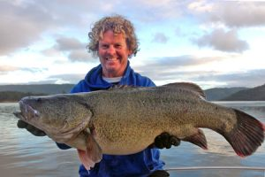 Cod almighty: Tony Blackford caught this 90 cm Murray Cod from Coller Bay, Lake Eildon, casting a four-bladed, black and orange, spinnerbait into the snags over the weekend (Picture: Victorian Inland Charters).
