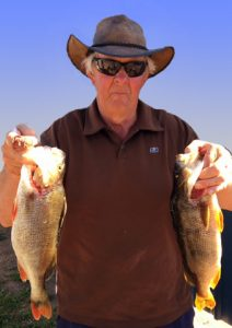 Jeff Broughton of Geelong displays a couple of the redfin he caught from Lake Purrumbete last week (Picture: John Clements).