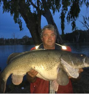 John Clements with a 20.4 kg cod from the Murray near Bundalong (Picture: John Clements).