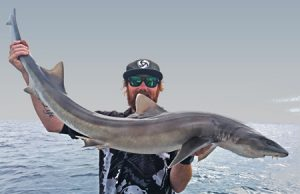 Aaron Habgood with his whiskered shark (Picture: Aaron Habgood).