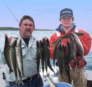 Lockie Wombell and Hugh Johnstone with a sample of their weekend's whiting catch (Picture: Bob McPherson).