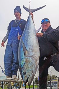 "Steve Evans and Jason Powell of ""Bag out Charters"" with the 108 kg tuna (Picture: Bob McPherson)."