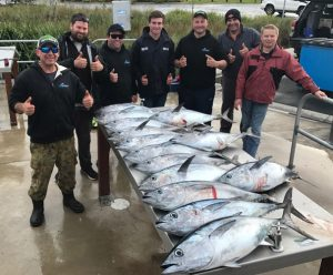 Small bluefin tuna are putting smiles on the faces of charter boat clients (Picture: Bob McPherson).