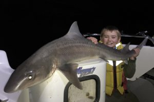 Jai Nolan with the 17 kg gummy shark off Torquay (Picture: Kevin McLoughlin).