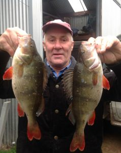 Rod Rees with a pair of respectable redfin from Lake Toolondo (Picture: Victorian Inland Charters).