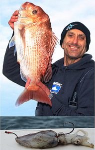Above: Bill Athanasselis with one of the snapper he caught while fishing offshore from Ricketts Point last week. Below: Bill's use of a small cable tie to secure the circle hook in its most effective attitude.